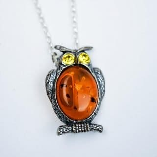 Novelty Amber BroochPendant with Silver Chain